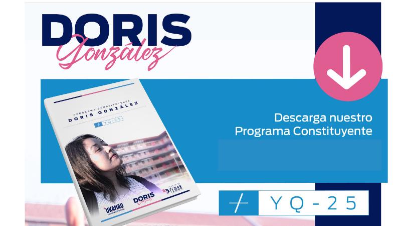 Programa Constituyente Doris González Distrito 8. Te invitamos a leer nuestras ideas para la Convención Constitucional. ¡A Democratizar la Ciudad!